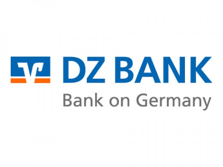 DZ Bank - Informatica reference